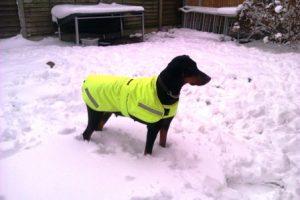 zena winter coat march 21 300x200
